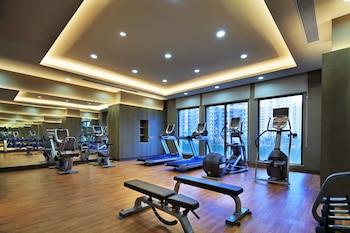 Pullman Nanchang Wanda Hotel - Fitness Facility  - #0