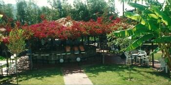 Alfa Hotel - Poolside Bar  - #0