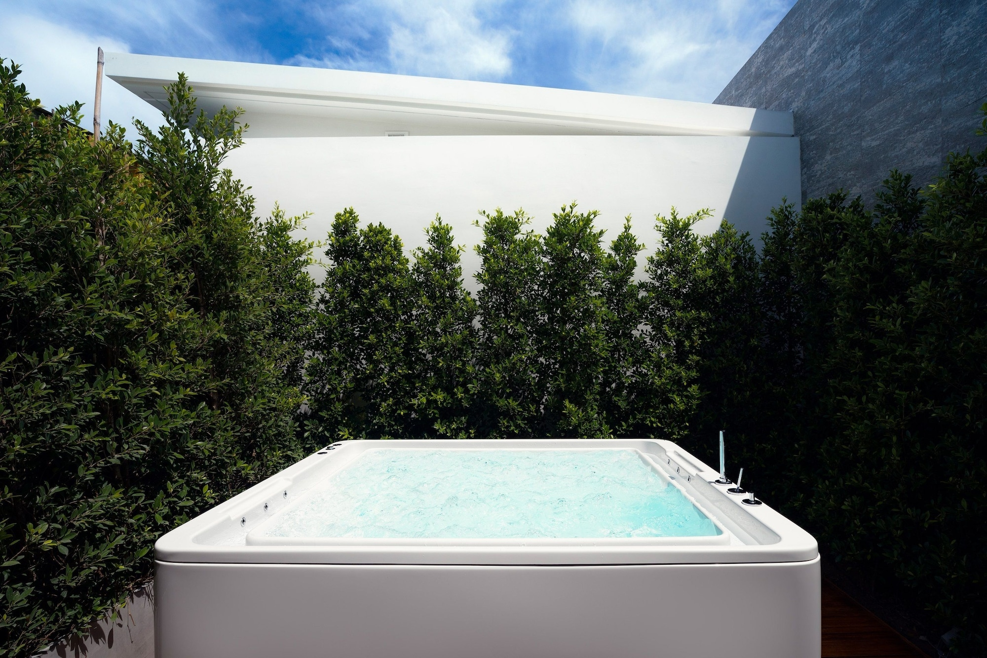Garden Jacuzzi Room