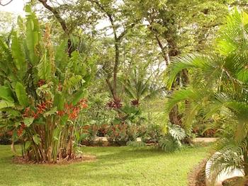 Villas Venado Condominio - Garden  - #0
