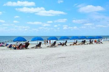 Beach Hotels Near Coligny In Hilton Head From 154 Night