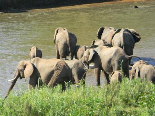Kruger View Chalets, Ehlanzeni