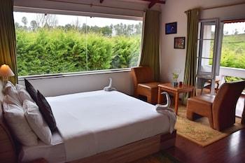 Hotel - Green Nest Resort
