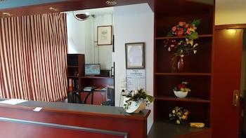 Hôtel le Clémenceau - Interior Entrance  - #0