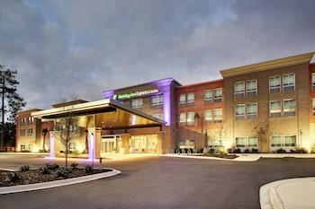 南卡羅來納查爾斯頓芒特普林森 US17 智選假日套房飯店 Holiday Inn Express & Suites Charleston NE Mt Pleasant US17