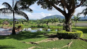Rice and Zen Boutique Resort - Garden  - #0