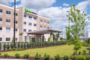Hotel - Holiday Inn Express & Suites Tampa North - Wesley Chapel