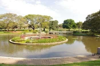 Garden View at Sydney Space Pop Up in Camperdown