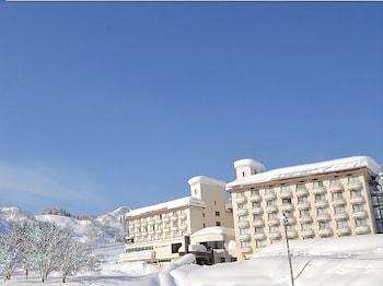 Joetsu Muikamachi Kogen Hotel - Exterior  - #0