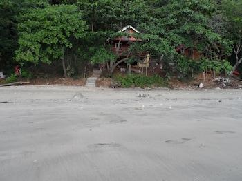 ジャングル ヒル ビーチ バンガロー