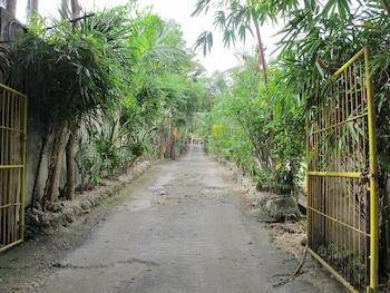 KAWAYAN MARINE VILLAGE BEACH RESORT Property Grounds