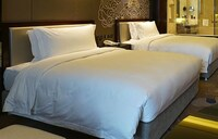 Executive Room, 2 Single Beds