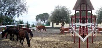 Ore Felici Park - Childrens Activities  - #0