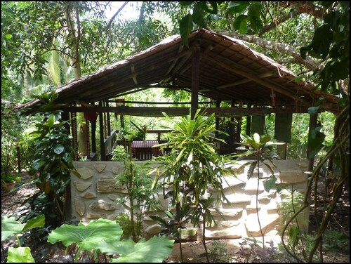 . Mangrove Resort
