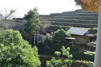 Thong Nguyen Homestay - Aerial View  - #0