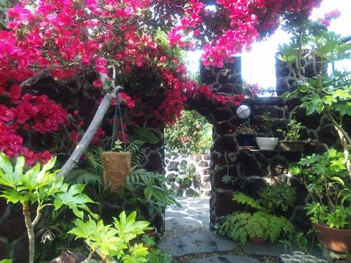 J Garden, Itō