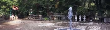 Misriote Farm - Fountain  - #0