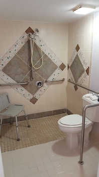 Garden Inn of Homestead - Bathroom  - #0