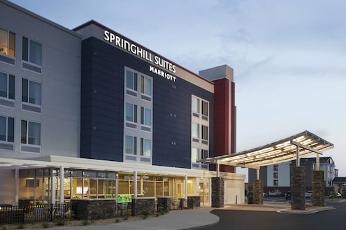 . SpringHill Suites by Marriott Murray