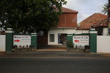 生命之海阿育吠陀渡假村