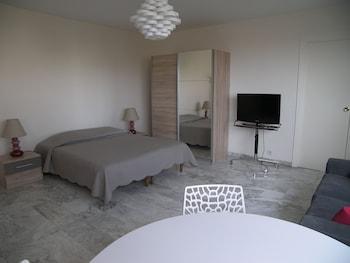 坎城中心總統豪華開放式公寓飯店