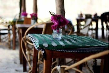 New Teddy's Place - Hostel/Backpacker - Restaurant  - #0
