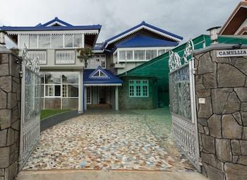 山茶花湖濱渡假村