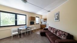 Apart Daire, 1 Yatak Odası, Küçük Mutfak (a114)