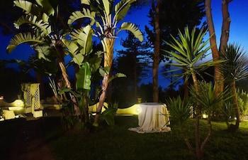 Hotel Garden Riviera - Garden  - #0