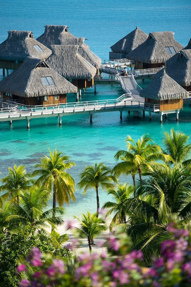 https://i.travelapi.com/hotels/17000000/16650000/16649100/16649075/4ae4cf38_z.jpg