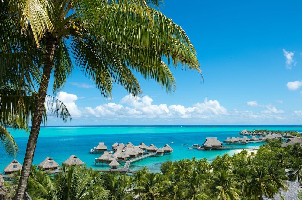 https://i.travelapi.com/hotels/17000000/16650000/16649100/16649075/8af835b0_z.jpg