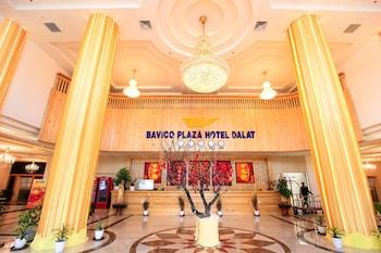 大叻巴維科廣場飯店