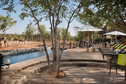 . Ongava Tented Camp - All-Inclusive
