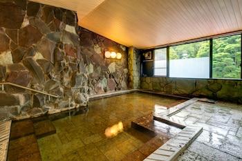 Yugawara Mizunokaori - Indoor Spa Tub  - #0