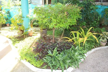 SUNDOWN RESORT AND AUSTRIAN PENSION HOUSE Garden