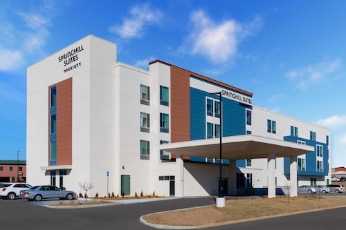. SpringHill Suites by Marriott Columbia
