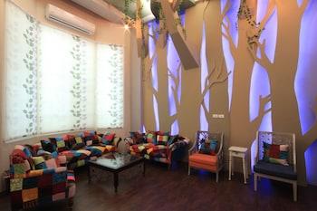 Citylife Jungle B&B - Lobby Sitting Area  - #0