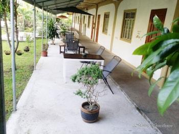MININE GUESTHOUSE Garden