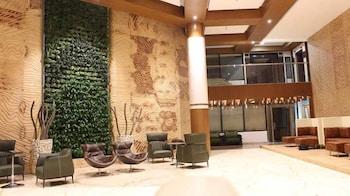 阿爾雅大飯店及渡假村
