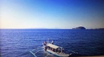 TURTLE COVE ISLAND RESORT Boating