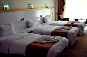 The Ancient Mesopotamia Hotel - Guestroom  - #0