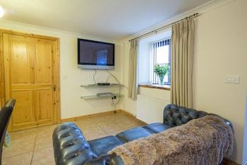 Tregib Mill Cottage - Living Room  - #0