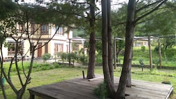 Nirvana Lodge & Homestay