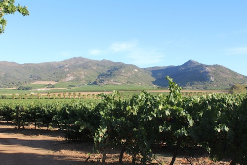 Moreson Guest Farm, Cape Winelands