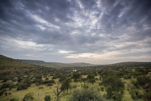 Loisaba Star Beds, Laikipia North