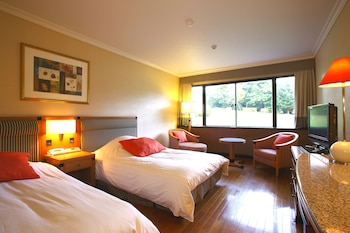 Standard Twin Room, Non smoking (View will be selected by the hotel)