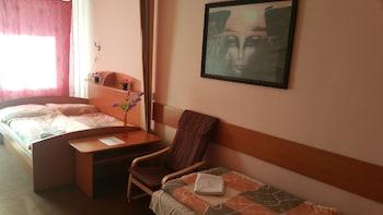 Hotel - Penzion Rohožník