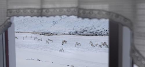 Wilderness Center / Óbyggðasetur Íslands, Fljótsdalshreppur