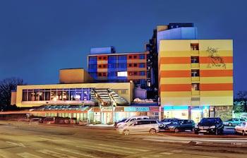 Hotel - Hotel Diana