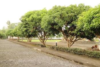 MAYON VIEW GARDEN APARTELLE & RESTAURANT Garden